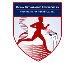 McKay Orthopaedic Research Laboratory
