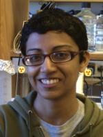 Sandya Ajith